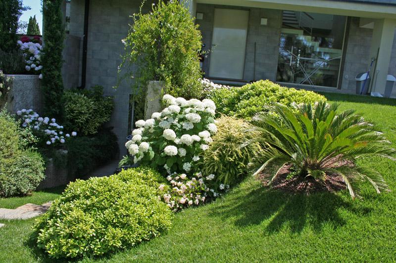 Realizzazione giardini per abitazioni private for Esempi di giardini